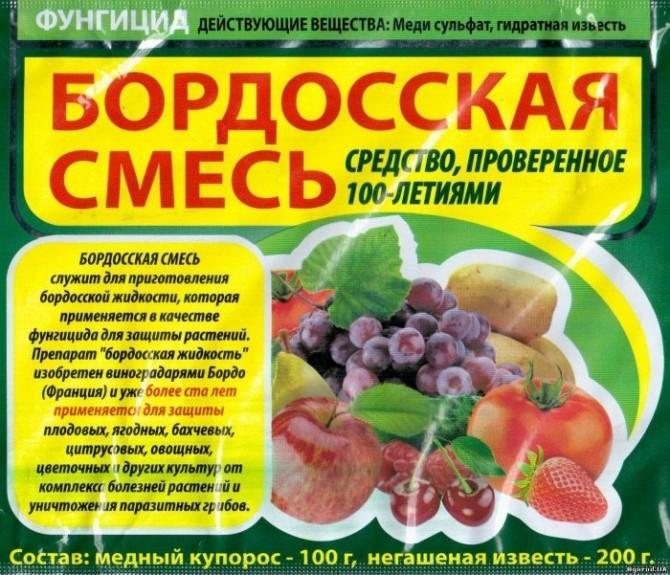 Бордосская смесь против фитофтороза картофеля