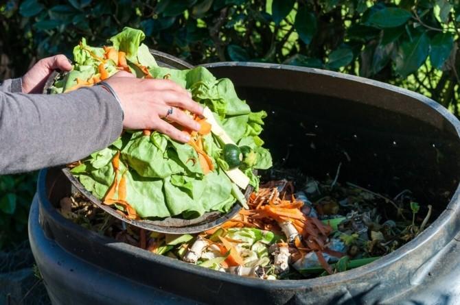 Из чего делают компост