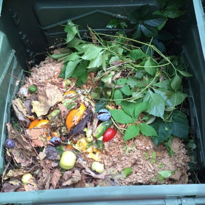 Что можно выбрасывать в компостную яму