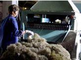 Линия по производству базальтовой ваты