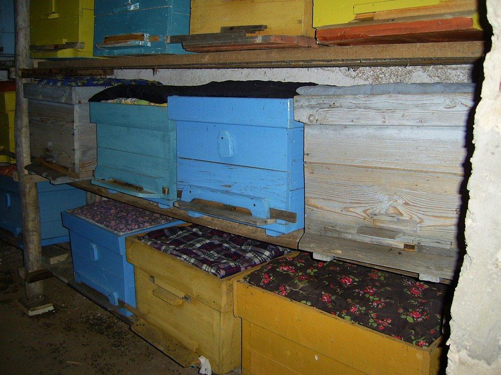 при какой температуре выстовлять пчел