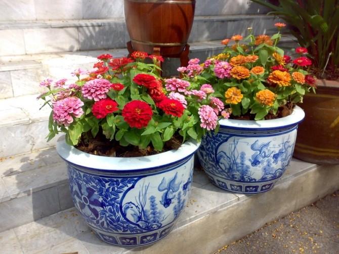 Уличные вазоны для цветов фото