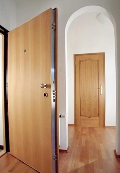 Современная дверь из металла