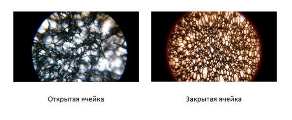 Сравнение микрофотографий двух разновидностей утеплителя